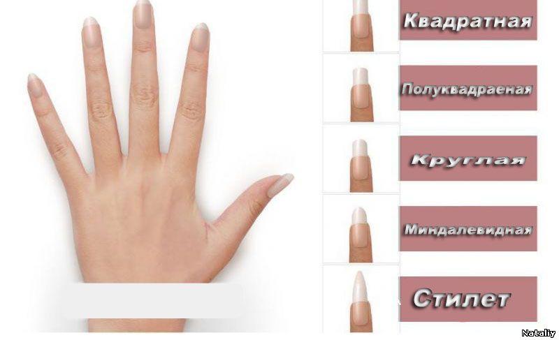 Размеры и нарощенных ногтей